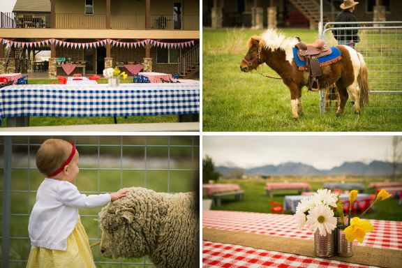Charlottes Web Birthday Party complete with a petting zoo Love it