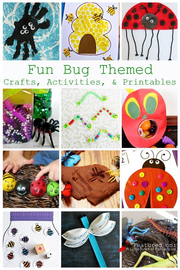 fun bug themed crafts activities and free printables for kids