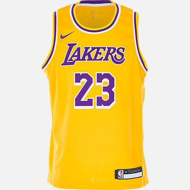 best service 52604 0e1d9 Kids' Nike Los Angeles Lakers NBA LeBron James Icon Edition ...