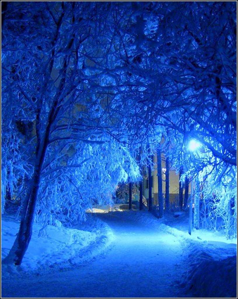 Paysage D Hiver Blue Wallpapers Blue Feeds Blue Aesthetic
