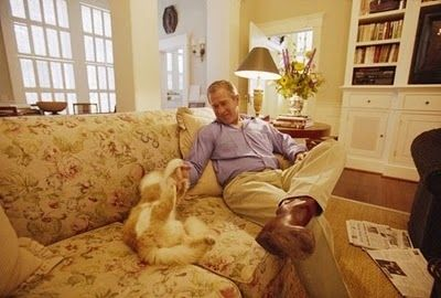 <b>For some, the White House was purrfect.</b>