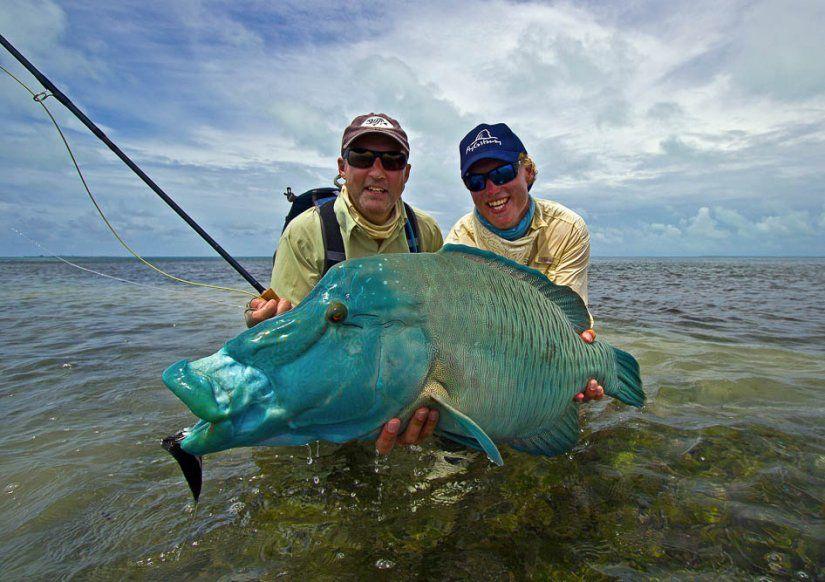 Farquhar atoll catch fauna sea life p che - Catch de fille ...