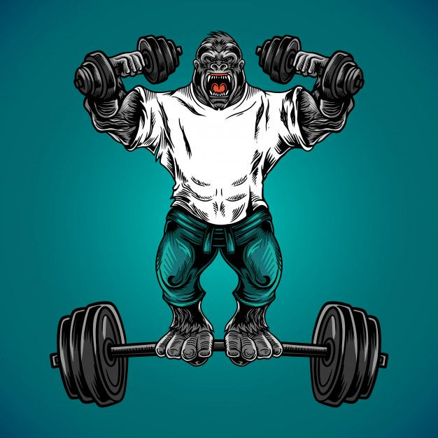 Gorilla Fitness Gym Vector Vector Illustration Character Gym Wallpaper Logo Design Art