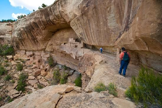 Mesa Verde National Park Is Located In Montezuma County Colorado There Are More Than