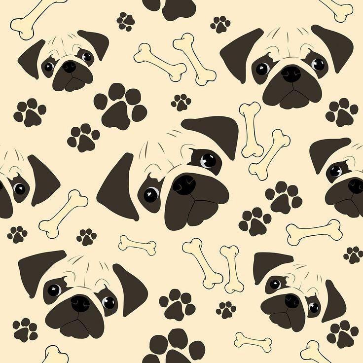 Pin de Nohemi Güido en mi dog   Pinterest   Fondos para iphone ...