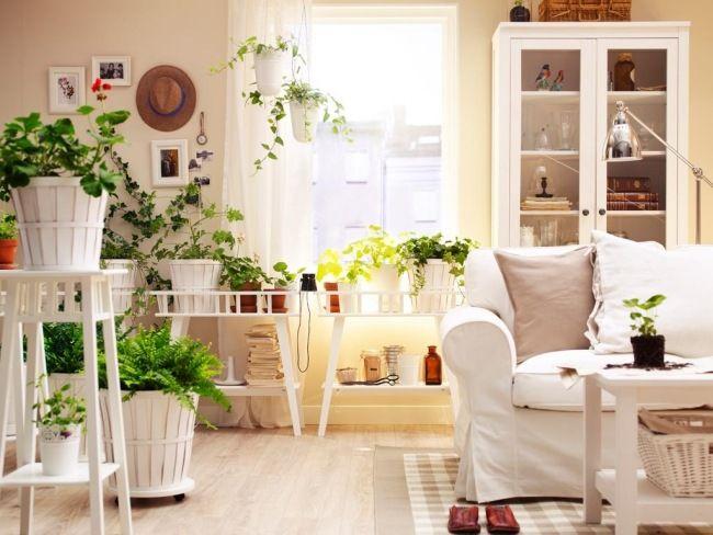 Pflanzen Deko Wohnzimmer ~ Pflanzen feng shui wohnzimmer dekorieren arten positive energie haus