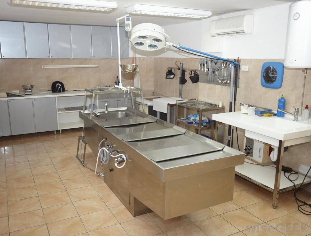 To become a morgue attendant, you\u0027ll need to have at least a high