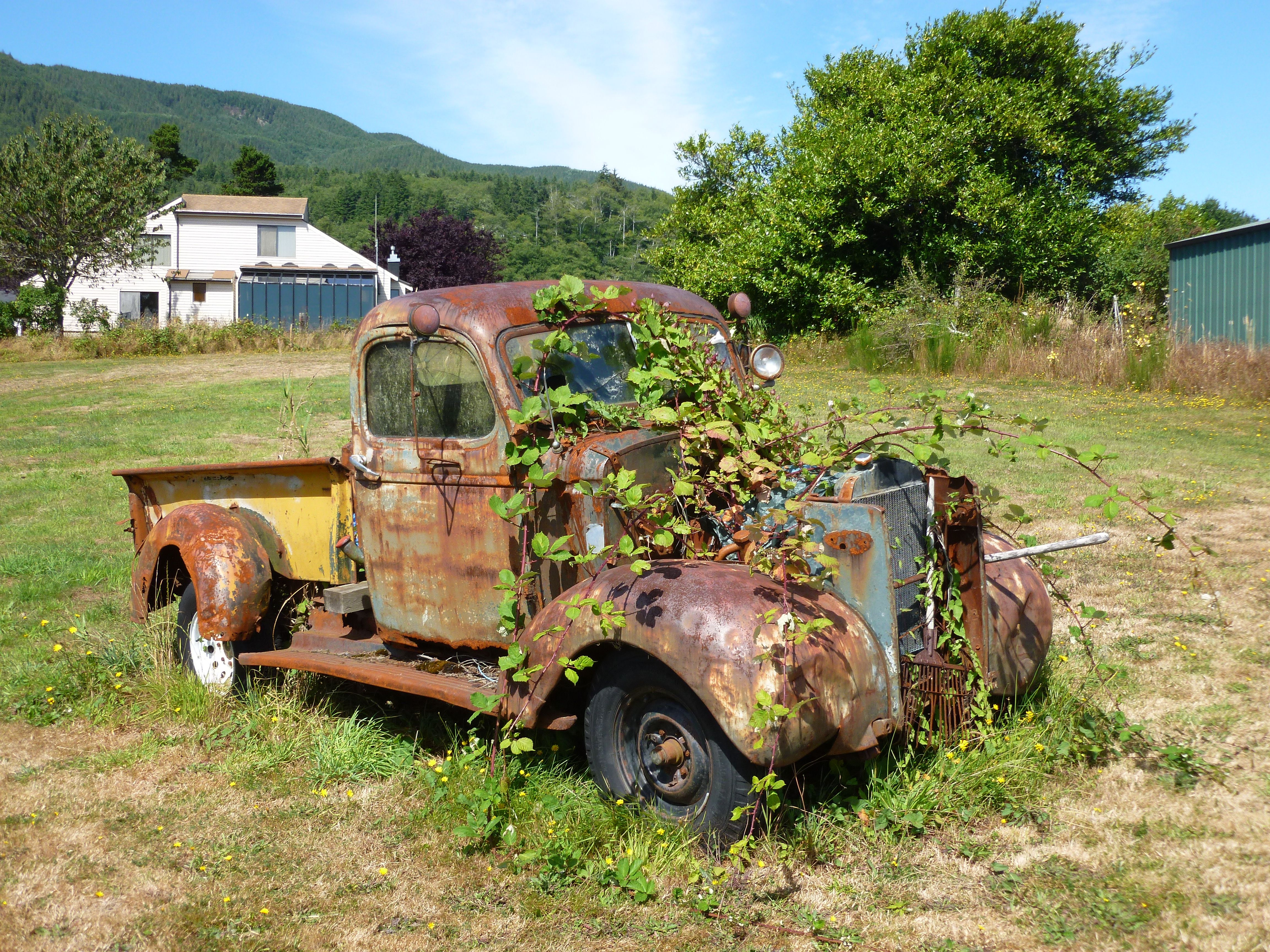 Vintage Truck Planter Vintage Trucks Old Trucks Vintage Truck