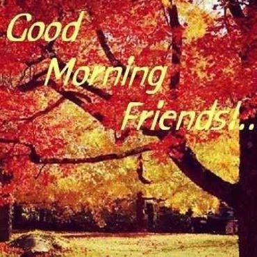 Good Morning Friends quotes quote autumn morning good morning morning  quotes good morning quo… | Good morning friends, Good morning good night,  Day and night quotes