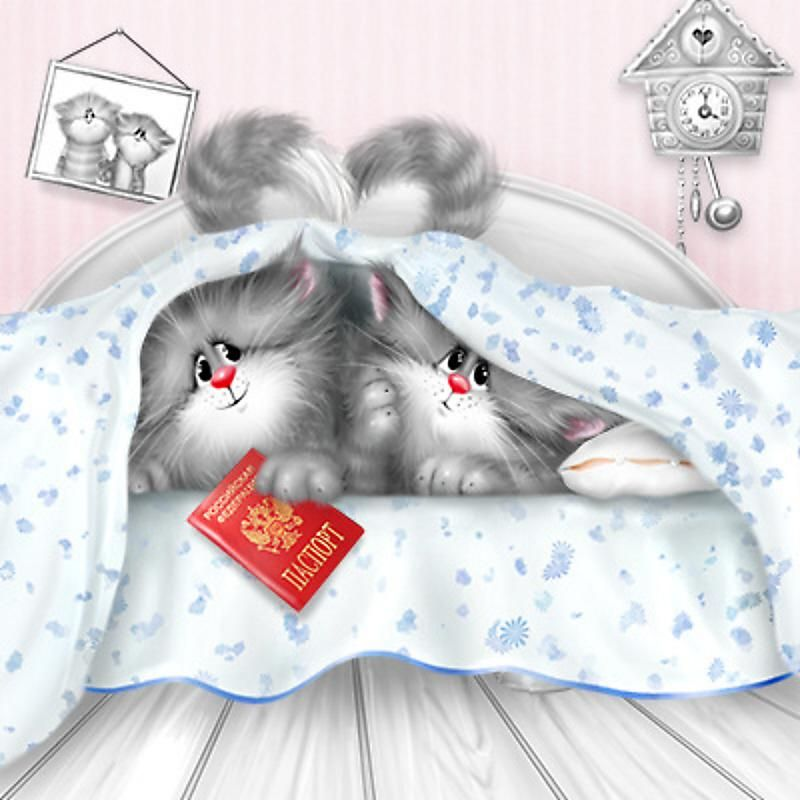 Картинки спокойной ночи с котами в кровати, любимое солнце открытках