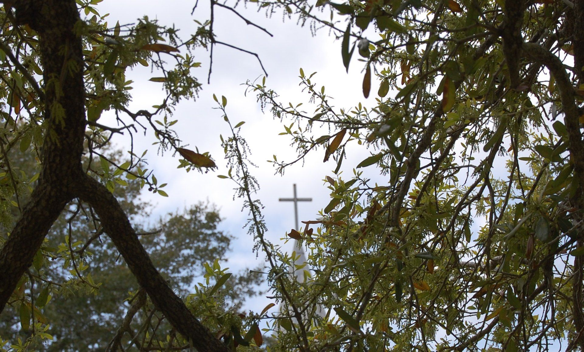 I love this picture; the cross speaks volumes! A little church in Brenham.