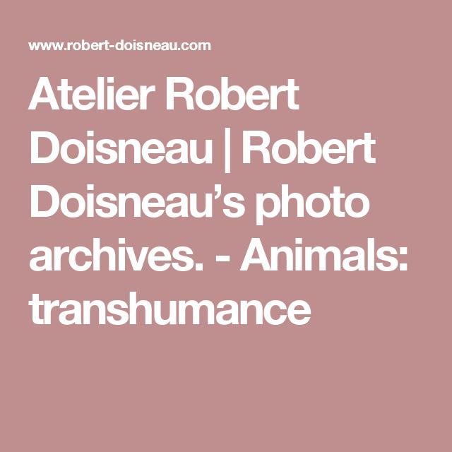 Atelier Robert Doisneau |Robert Doisneau's photo archives. - Animals: transhumance