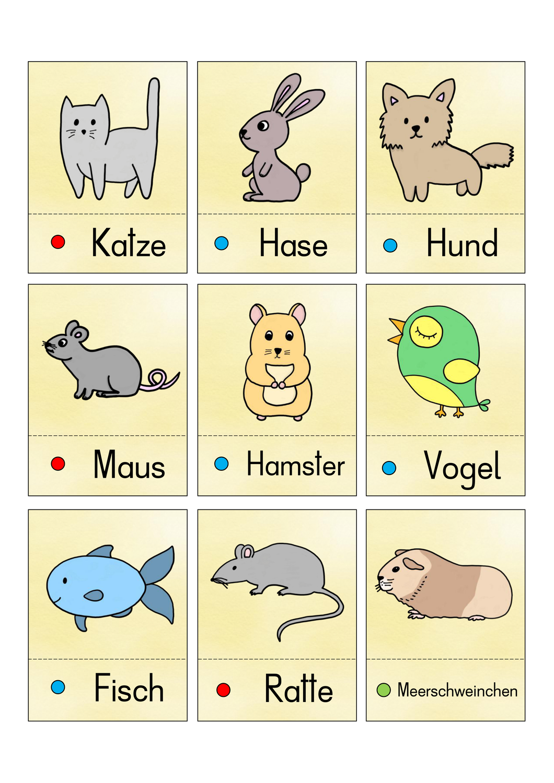 Wortschatz Haustiere Unterrichtsmaterial Im Fach Daz Daf In 2020 Unterrichtsmaterial Haustiere Sprachen Lernen
