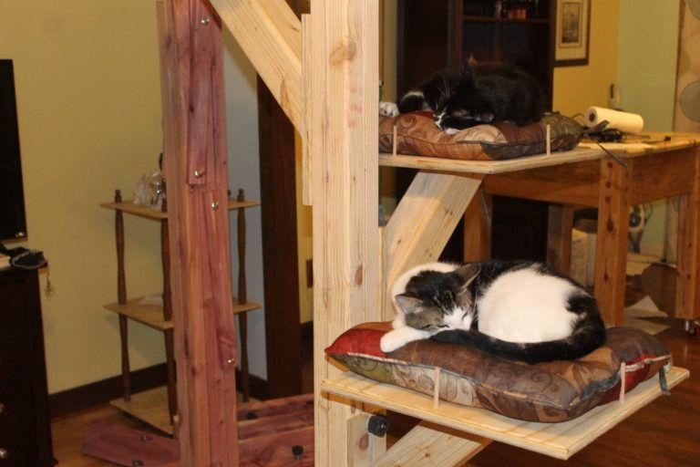 40 cool diy cat tree kitty condos or cat climbers