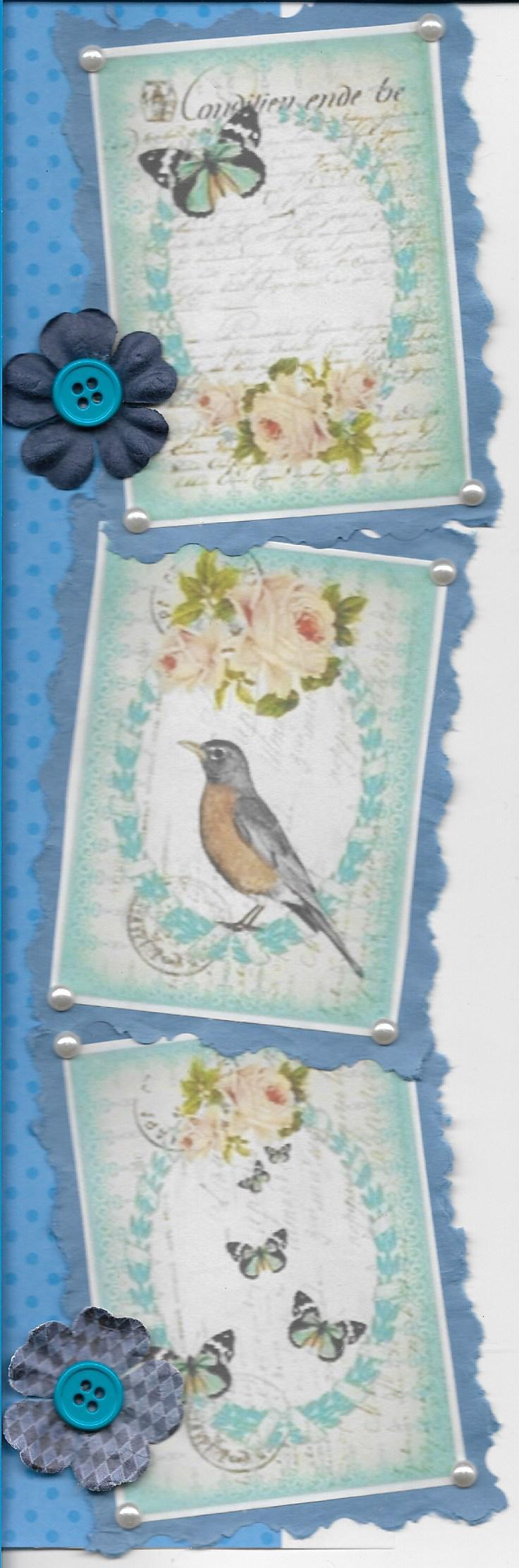 Blue, Butterflies, birds