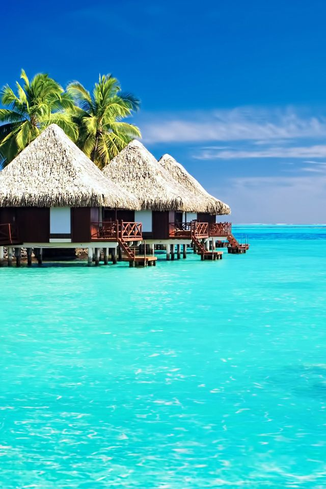 Tropical Bungalows Wallpaper Beach Summer Paradise Iphone