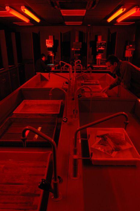 darkroom dark room photography red