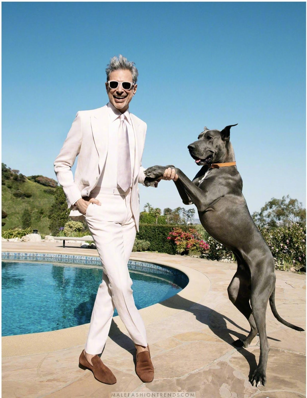 Jeff Goldblum And A Great Dane Mens Outfits Male Magazine Men