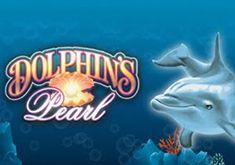 аппараты дельфинчики играть онлайн игровые в