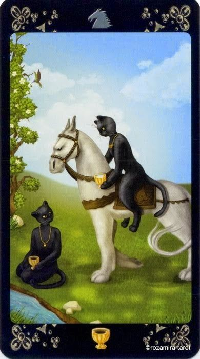 Black Cats Tarot - Knight of Cups