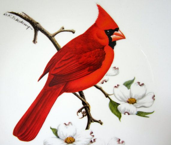 a beautiful Avon 1974 Red cardinal Collector Plate. from the North American  Song Birds collection