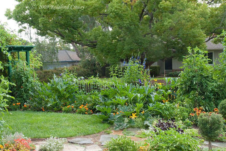 Rosalind Creasy S 100 Square Food Edible Vegie Garden Edible Landscaping Edible Garden Outdoor Gardens