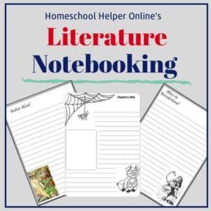 Novel writing helper