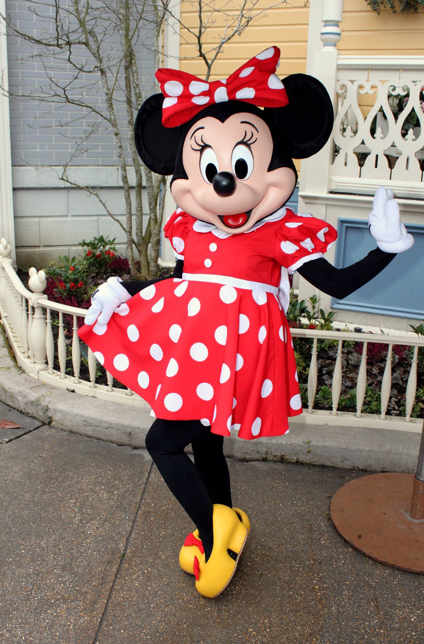 Lovely Minnie Mouse With Face Striking