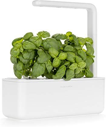 Amazon Com Click And Grow With Images Indoor Herb 400 x 300