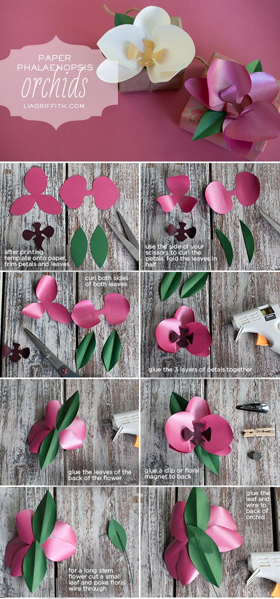 Diy Paper Orchid Flower Crafts Paper Flowers Paper Flowers Diy