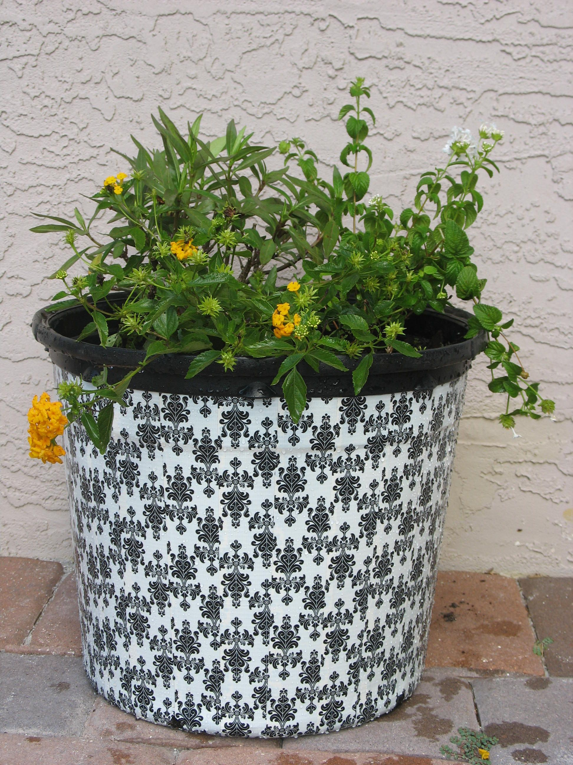 Cheap container gardening duct tape planters lettuce share cheap container gardening duct tape planters lettuce share izmirmasajfo