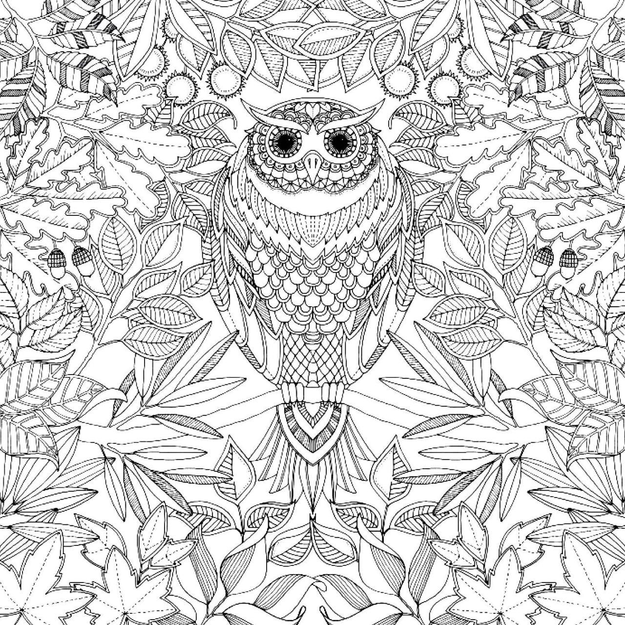 free printable coloring page coloring pages pinterest