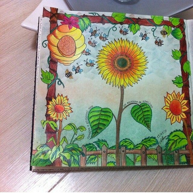 Johanna Basford Colouring Coloring Books Secret Gardens Garden