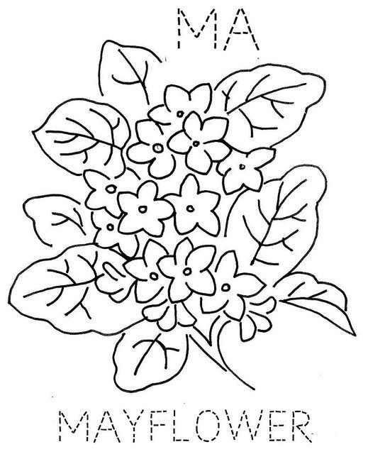 Massachusetts Mayflower | flowers | Pinterest | Bordado, Dibujos and ...