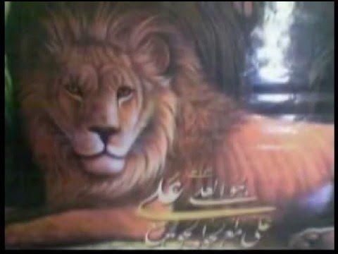 قصيدة أحباب أنصار الامام المهدي ووصيه اليماني Animals Lion
