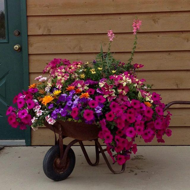 may 2015 the greenhouse diaries garden art pinterest garten ideen garten und garten deko. Black Bedroom Furniture Sets. Home Design Ideas