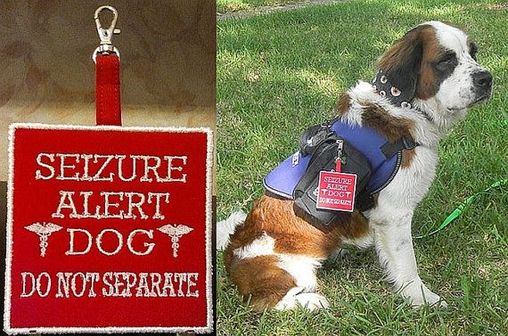 Embroidered Seizure Alert Dog Clip On Tag By Luv4pawsembroidery