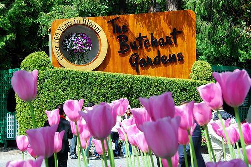 f9e3c11e8d9ef94fd477f5169bed88fc - Butchart Gardens To Swartz Bay Ferry