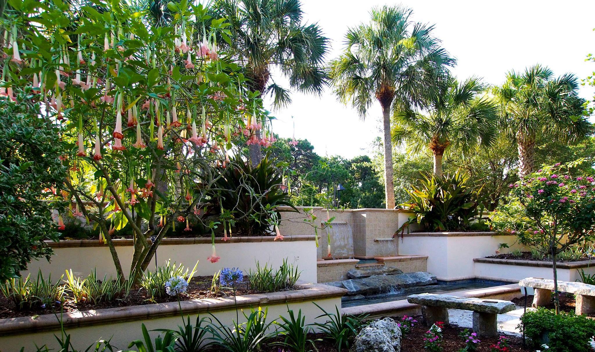 f9e3cef00b87bc43b8219c00bfd74601 - The Florida Botanical Gardens In Largo