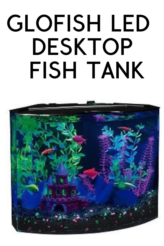 Buyer S Guide The Best Desktop Aquarium Of 2018 Desktop Aquarium Glofish Fish Tank