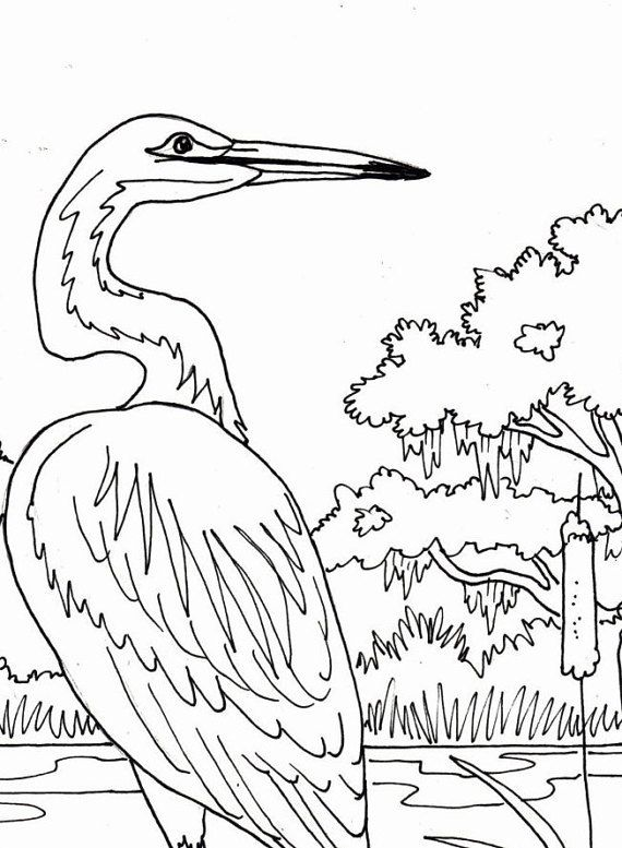 Egret On Branch Coloring Page Beach Art By Adultcoloringbook