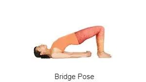 14++ Yoga for shortness of breath trends
