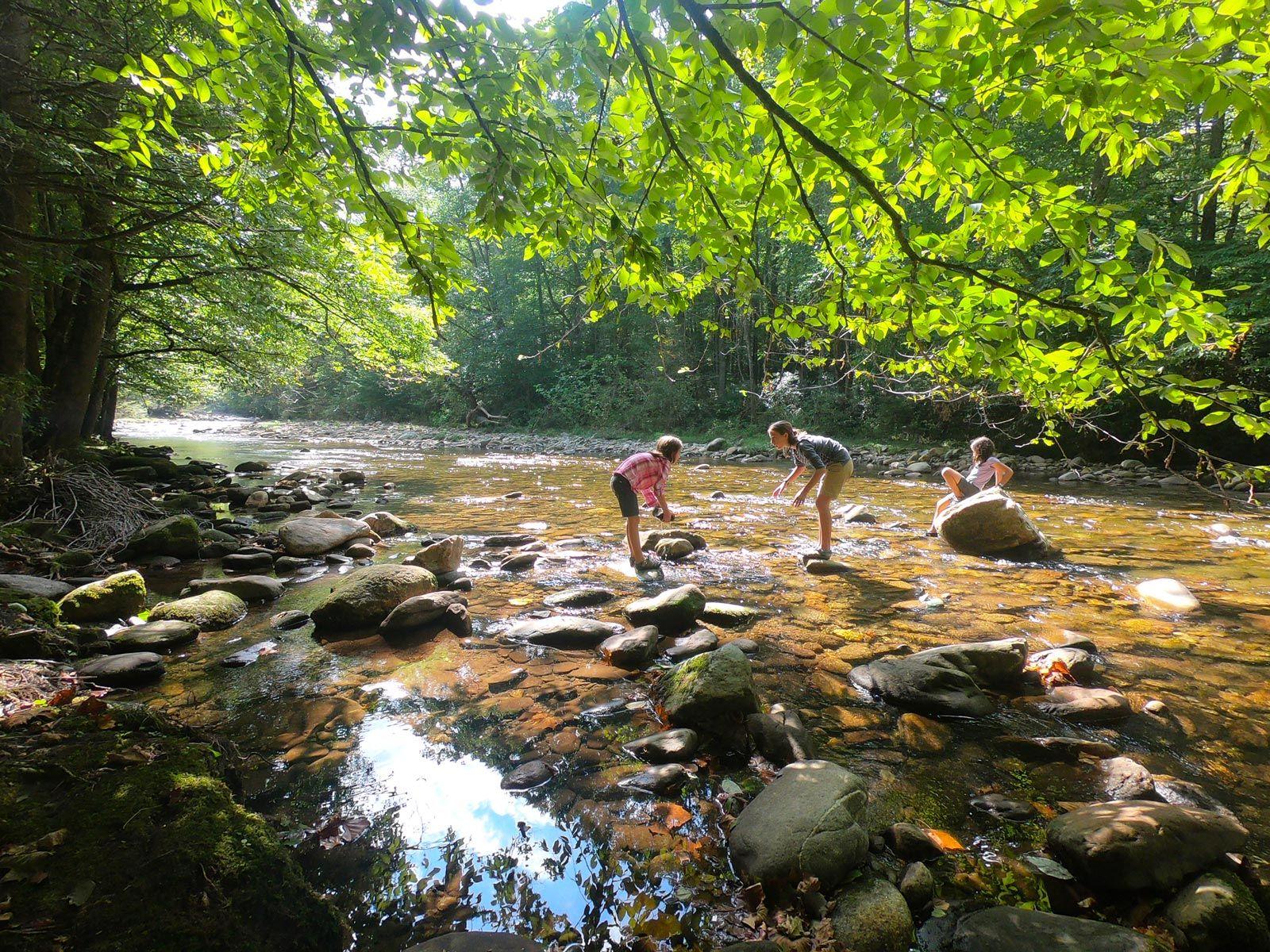 Camping at Black Mountain Campground / North Carolina ...