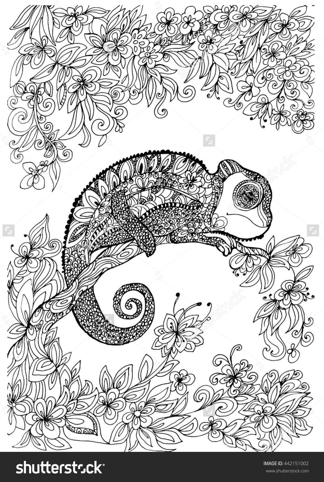 chameleon on the tree coloring page shutterstock