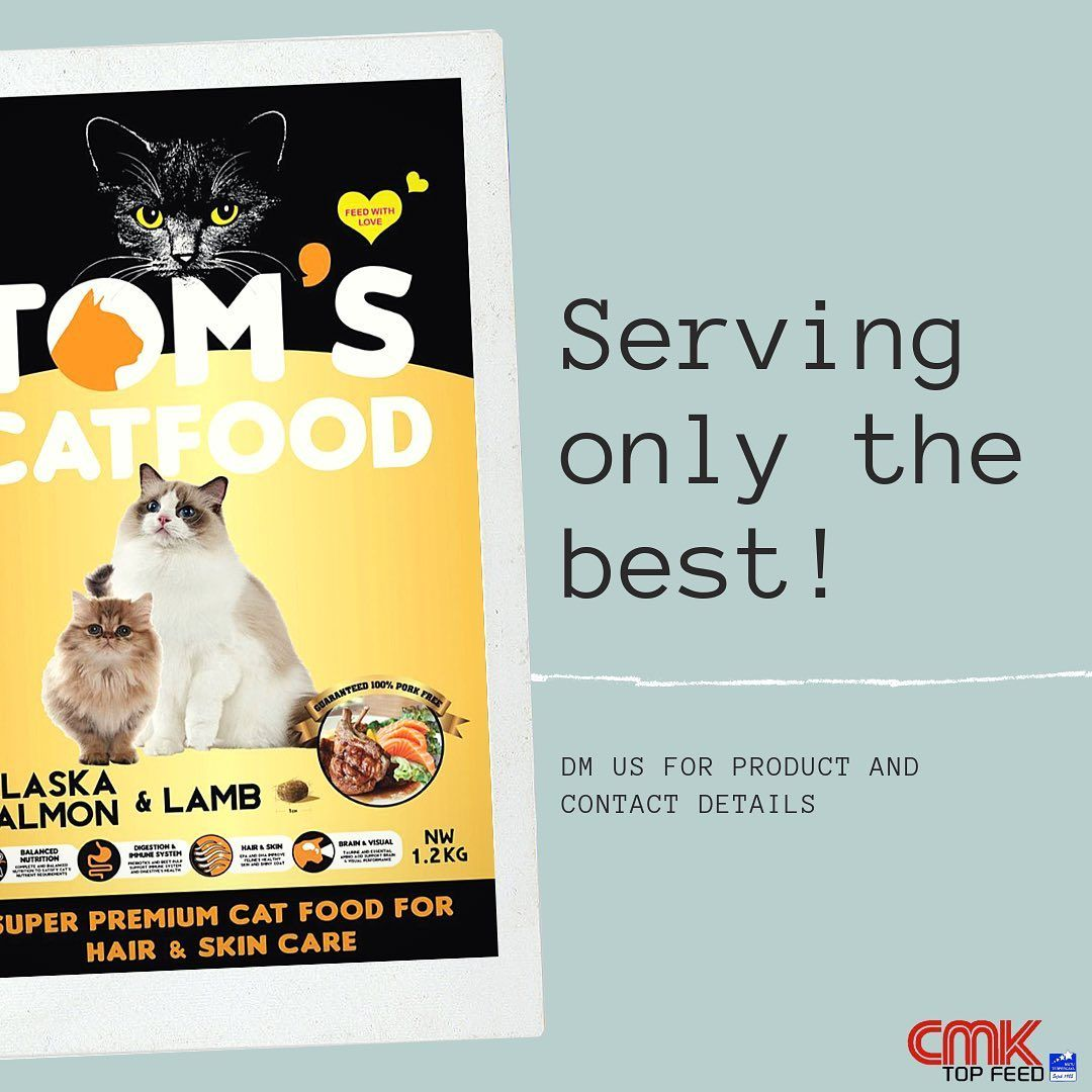 Tom S Catfood For Cats And Kittens In Alaska Salmon And Lamb Flavor For Hair And Skin Care Manufactured With Premium Raw Ingredients With Improved Formula Resim