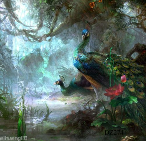 Peacock-scenery-vinyl-photography-Backdrop-Background-studio-prop-5x7FT-DZ274