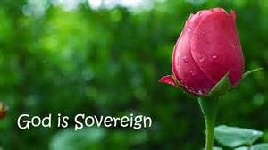 God is Sovereign - Bing images