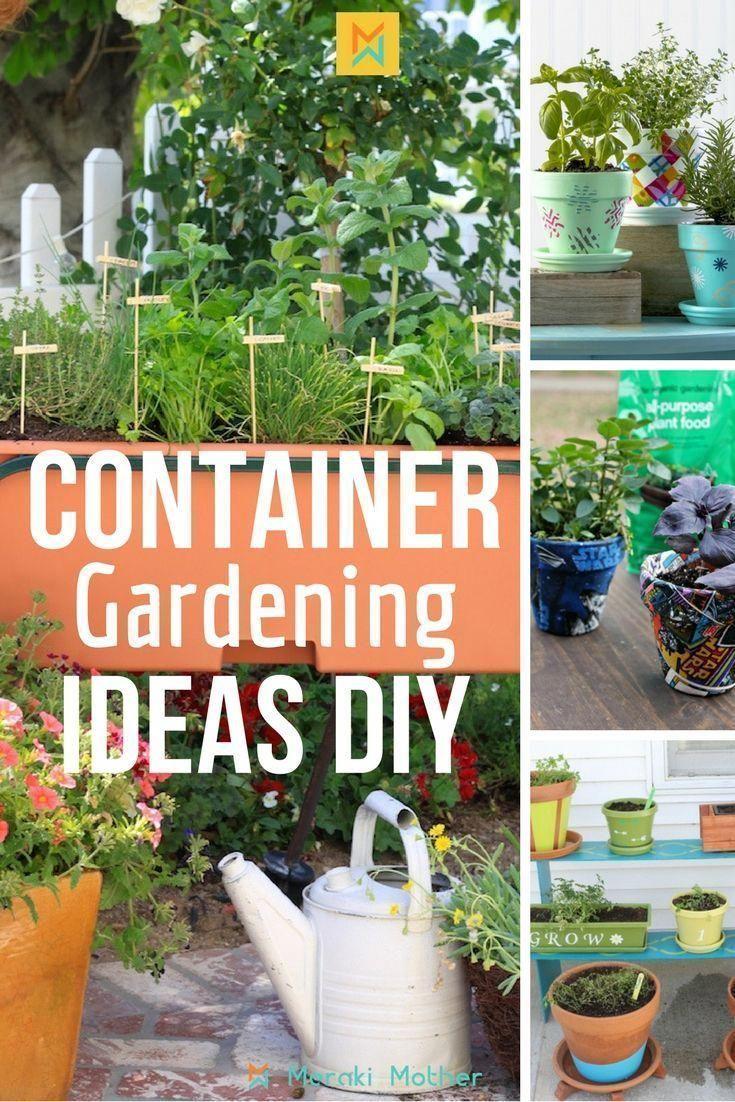 Container Gardening Ideas Diy Vegetable Gardening Vegetable