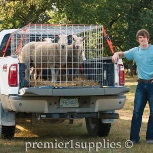 Wire Panels to Create Pens and Barriers for Livestock - Premier1Supplies