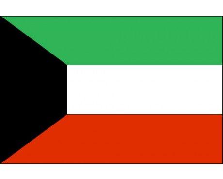 Kuwait Flag Kuwait Flag Flag Flags Of The World